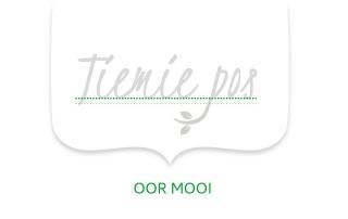 Tiemie pos logo grys groen 2 MOOI