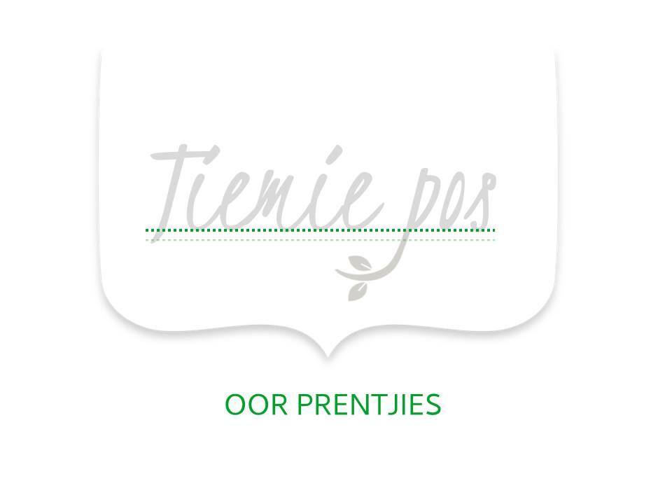 Tiemie pos logo grys groen 2 OOR PRENTJIES